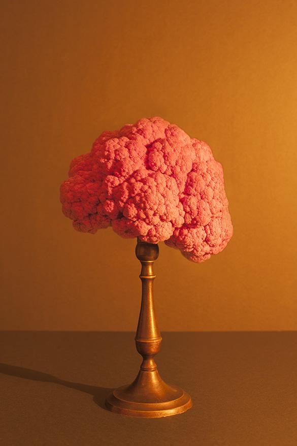 Rode bloemkool aangelicht met kaarslicht
