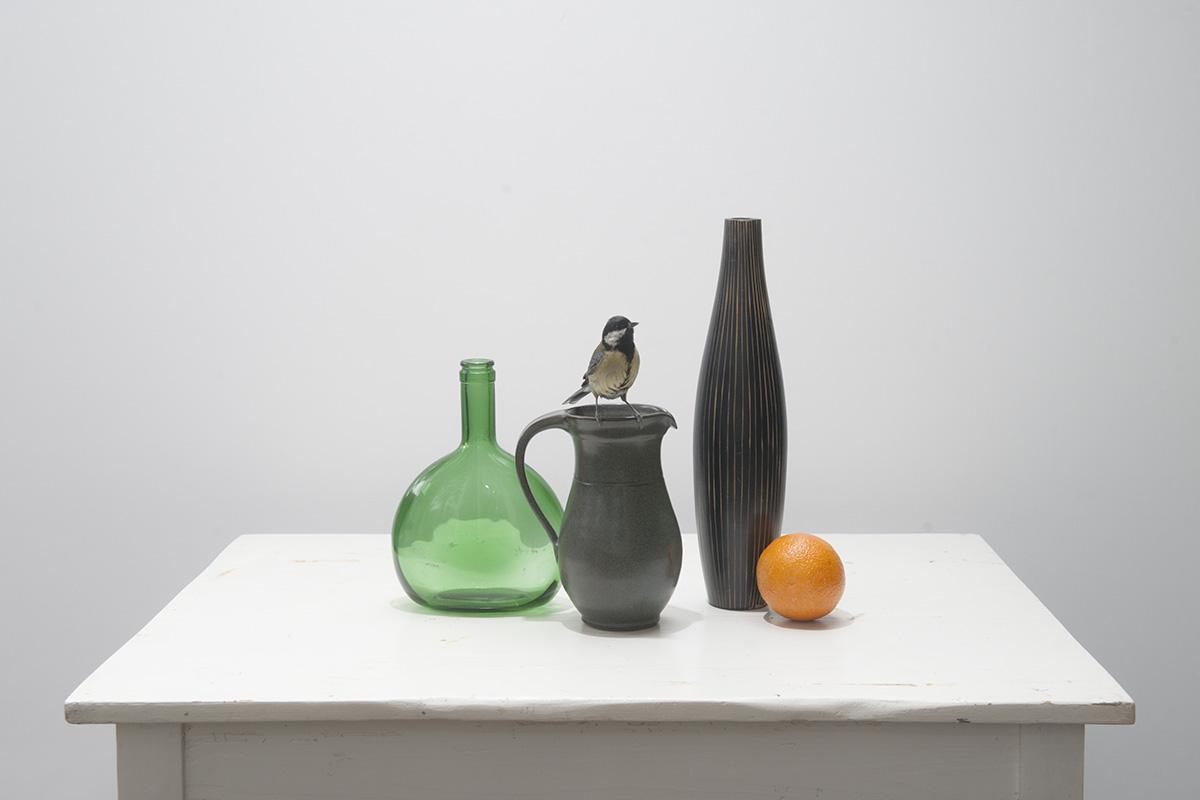stilleven opstelling met groen fles, koolmees, sinasappel en houten vaas