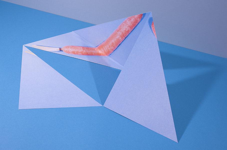 foto van wortel versneden in verschillende driehoeken