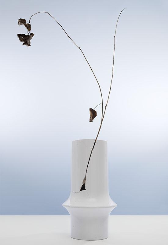 gebroken witte vaas met scheur waar een takje uitsteekt met enkele blaadjes