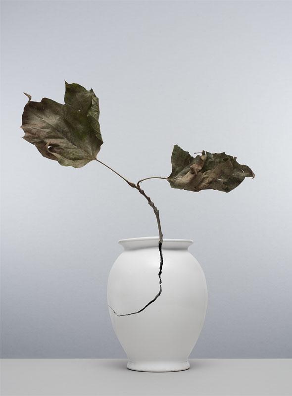 gebroken witte vaas met scheur waar een takje uitsteekt met blaadjes